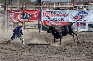 14 06-08 Glennville Rodeo 9601-XL